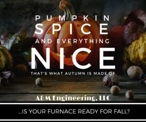 Pumpkin Spice and Everything Nice, That is What Autumn is Made Of! But is your Furnace ready?